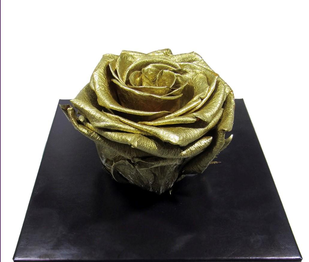 Metallic rose from Splendid Roses