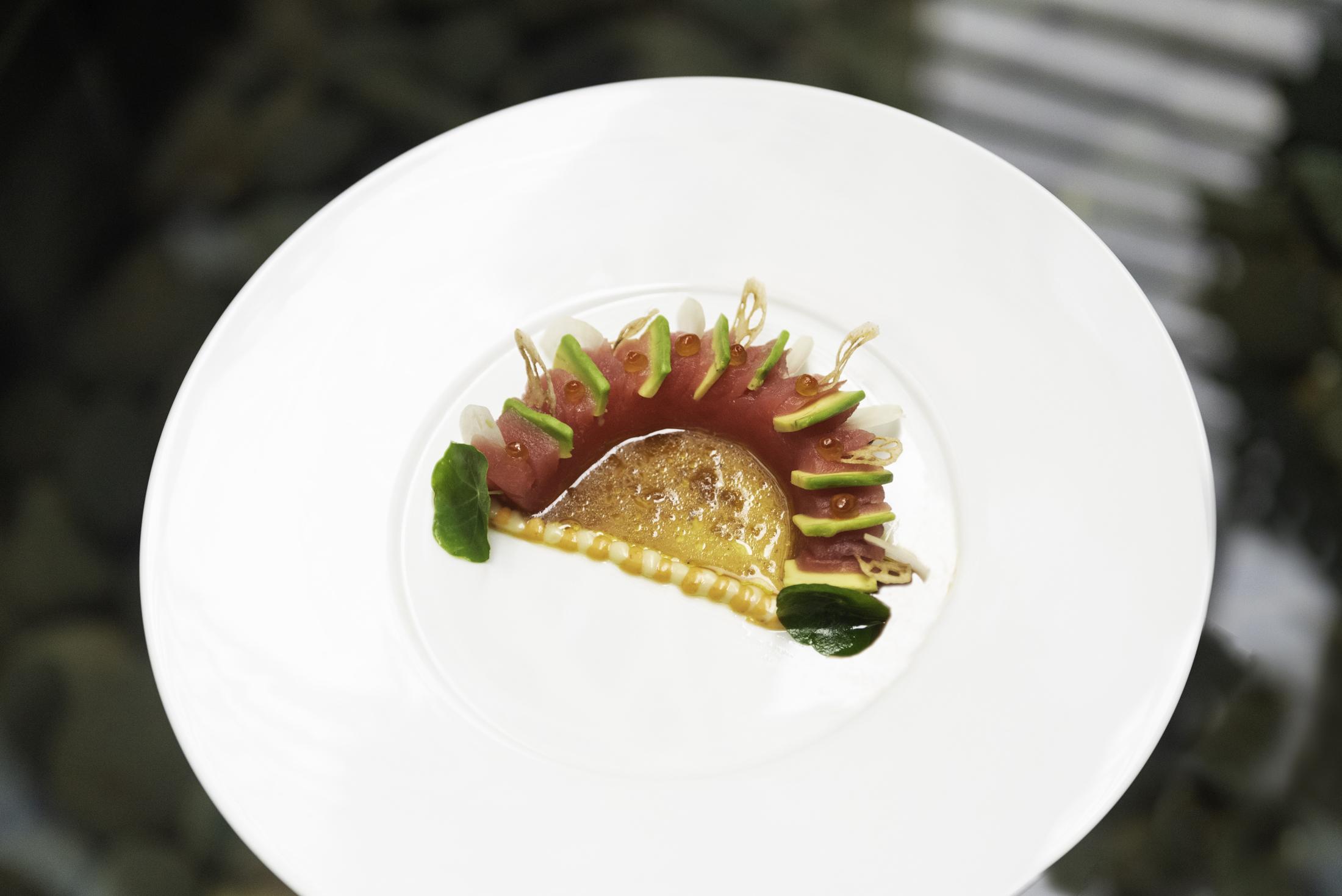 Tuna Avocado