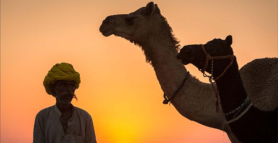Pushar. Courtesy: Rajasthan Tourism