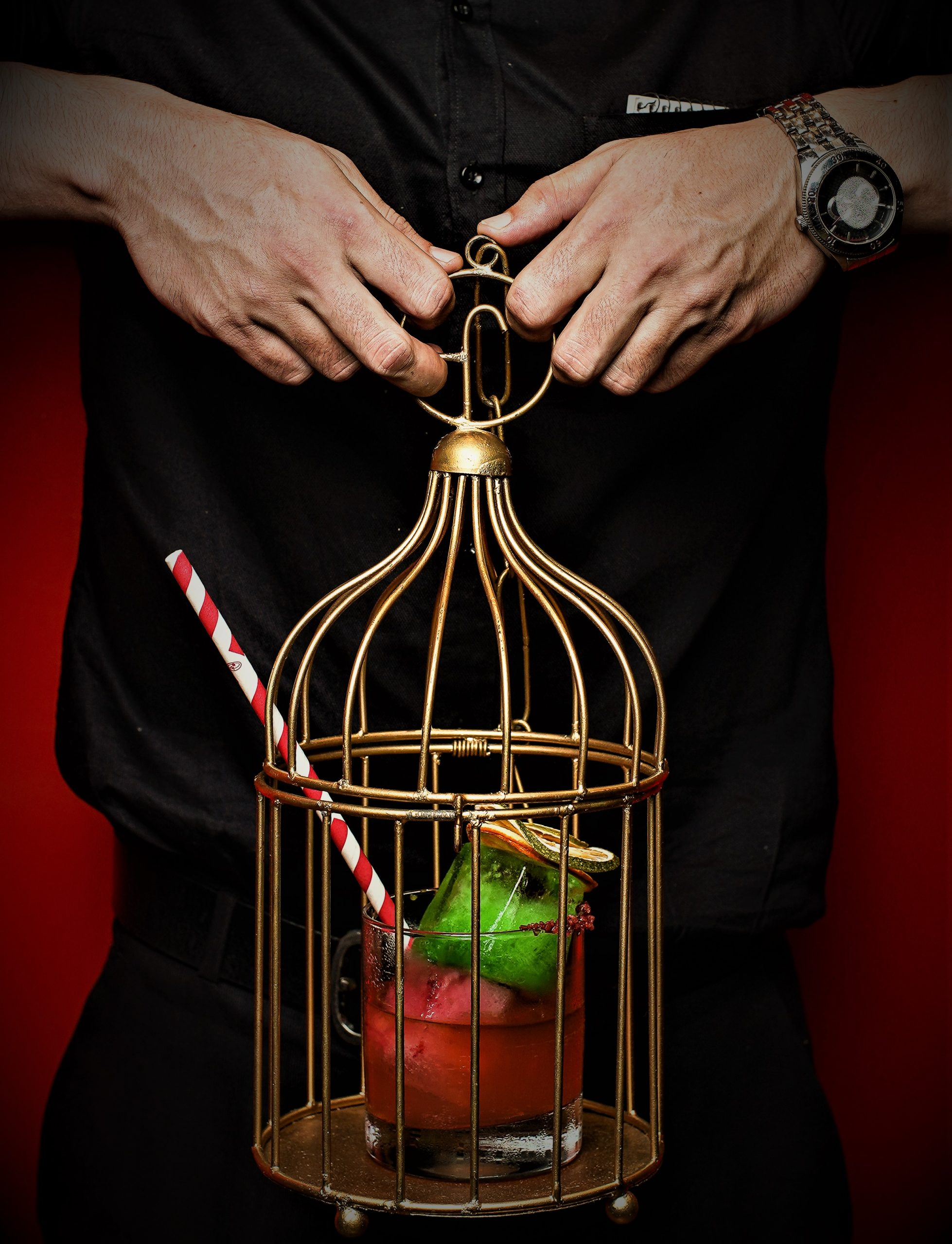 The Finch Birdcage