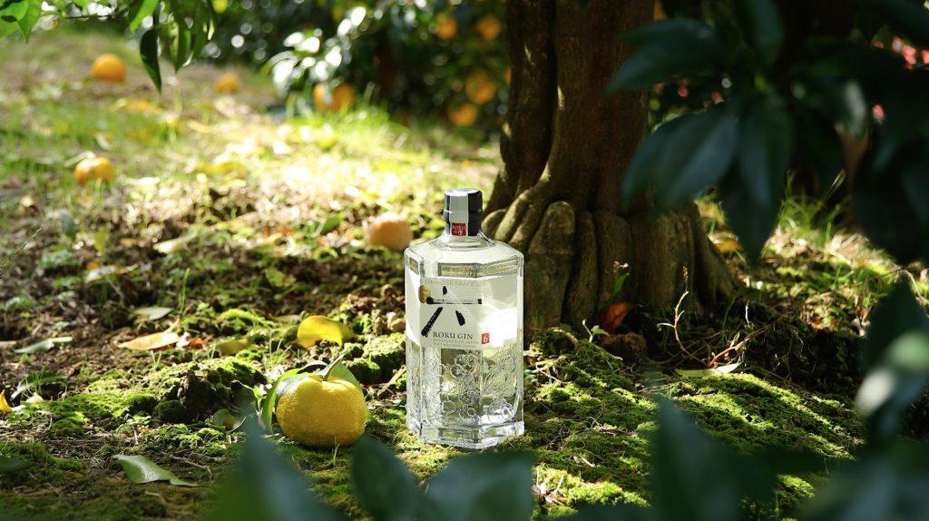Roku Bottle under Yuzu Tree JPG
