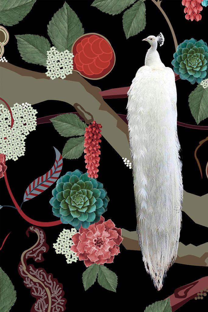 Wallpaper, Bird of Juno